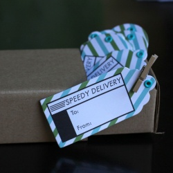 Airmail Gift Tag Set: Speedy Delivery