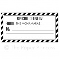 "Airmail Gift Tag: ""Special Delivery"""